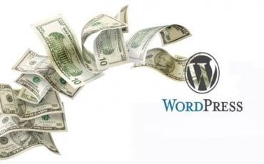 Wordpress Tema Yapmak ve Satıp Para Kazanmak