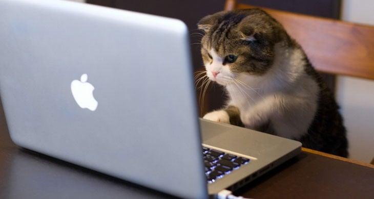 Yazılımcılar Neden Apple Mac Bilgisayar Kullanır?