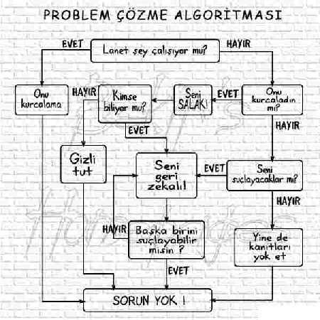 Problem Çözme Algoritması