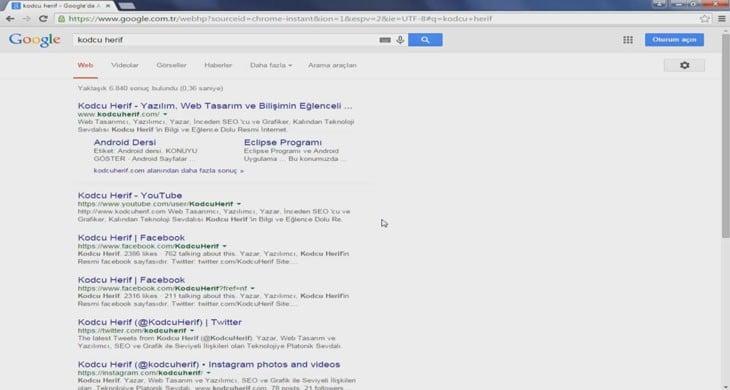 İnceleme Bilgi: Google Araması ve Alt Bağlantılar