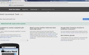 İnceleme Bilgi: Web Sitesi Sayfa Yapısı ve Responsive Tasarım